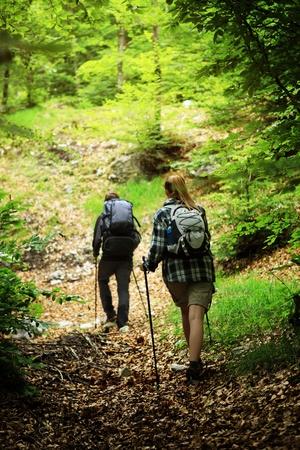 Jong koppel nordic walking op pad in het bos, achteraanzicht Stockfoto