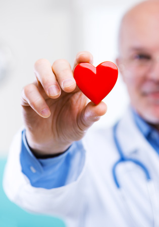 cardiologist: Doctor holding an heart, cardiologist and cardiovascular diseases concept. Stock Photo