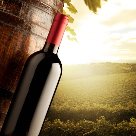 Wine bottle and wodden barrel with sunny rural landscape on background. photo
