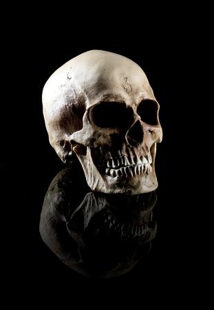 spooky skull: A Natural human skull on black background.