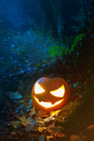 jack o lantern: Glooming pumpking halloween latern with lit candle on tree root with fallen leaves around.