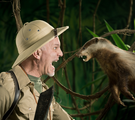 médula: Explorer Aterrorizado cumplir una cara feroz tejón a cara en el bosque.