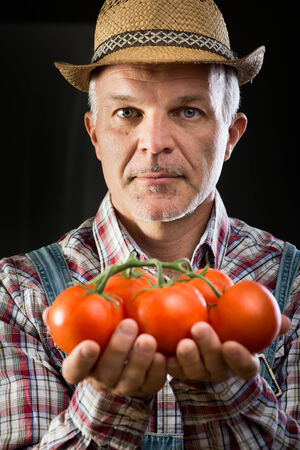 Farmer holding fresh tomatoes with hands cupped on dark background. photo