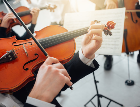 symphony orchestra: Confident violinist playing his instrument and reading a music sheet, classical music symphony orchestra performing on background