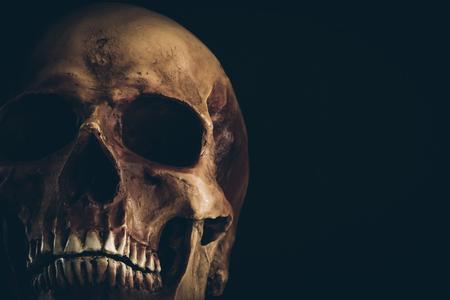 Creepy alten Schädel Nahaufnahme auf schwarzem Hintergrund, den Tod und das Geheimnis Konzept