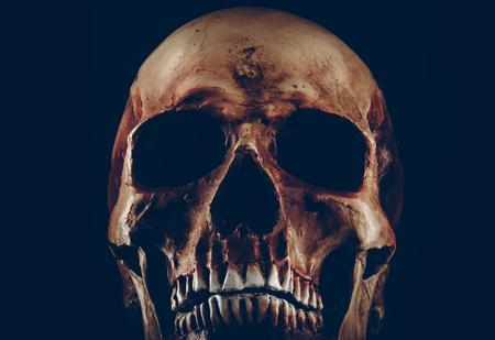 demonio: Espeluznante, desde el cráneo de cerca sobre fondo negro Foto de archivo