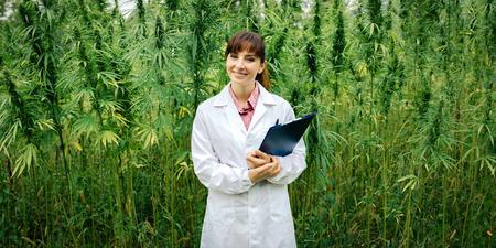 Confident female doctor with clipboard posing in a hemp field, alternative herbal medicine concept Archivio Fotografico
