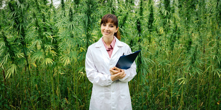 Confident female doctor with clipboard posing in a hemp field, alternative herbal medicine concept Stockfoto