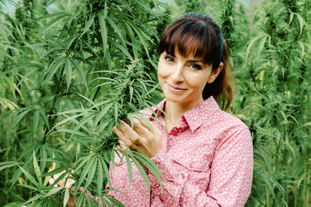 Beautiful young woman in a hemp field holding a hemp plant stem and smiling at camera