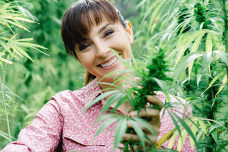 Jeune femme souriante dans un champ de chanvre vérifier plantes et de fleurs, l'agriculture et le concept de la nature Banque d'images