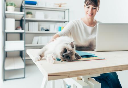 trabajando en casa: La mujer joven en su casa trabajando en el escritorio y que abraza a su gato precioso, mascotas y el concepto de estilo de vida