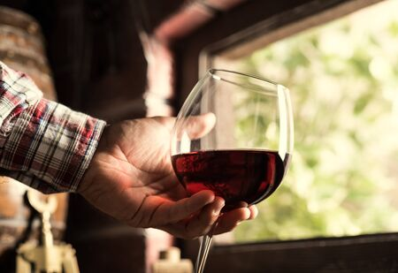 Sommelier tasting a glass or red wine in the cellar, lush vineyards on the background Reklamní fotografie