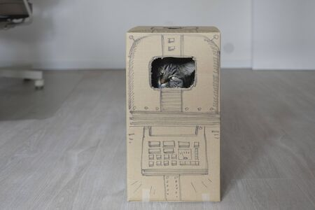Cute cat playing at home and peeking from a hole in a carton box with a sketch of a robot Stock Photo