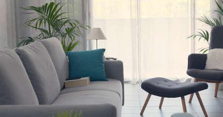 Modern living room interior with houseplants and comfortable sofa