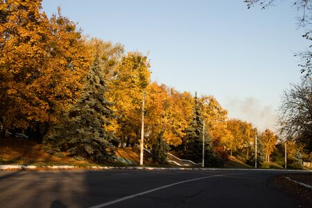 Colorful autumn trees. Trees by the road. Winding road. Power line along the road.