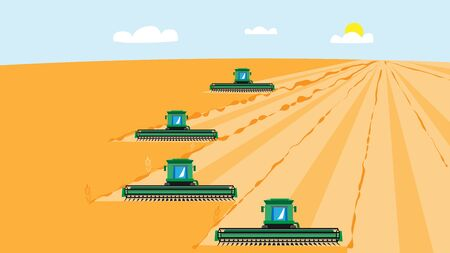 4 combine harvesters mow wheat crop. Vector illustration for agribusiness. Ilustracje wektorowe