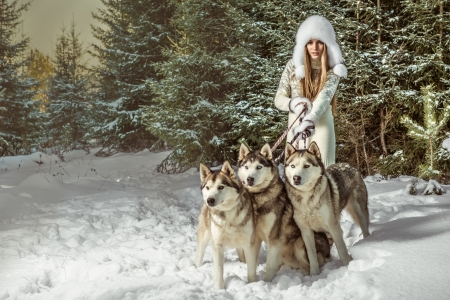 arctic: Fashion portrait of beautiful woman with three dogs Stock Photo