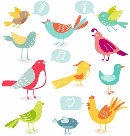 aves caricatura: Lindas aves de colores con ilustraci�n vectorial signos