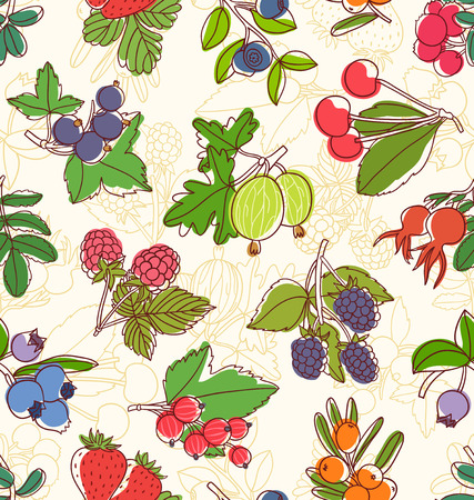 dog rose: Colorful berries vector seamless pattern
