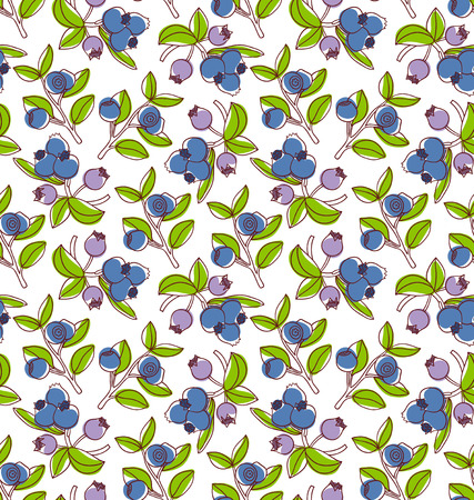 blue berry: Colorful blueberries vector seamless pattern