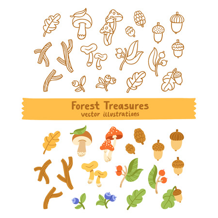 grebe: Autumn forest treasures vector illustration outlined and colorful collection with mushrooms, sticks, acorns and other things