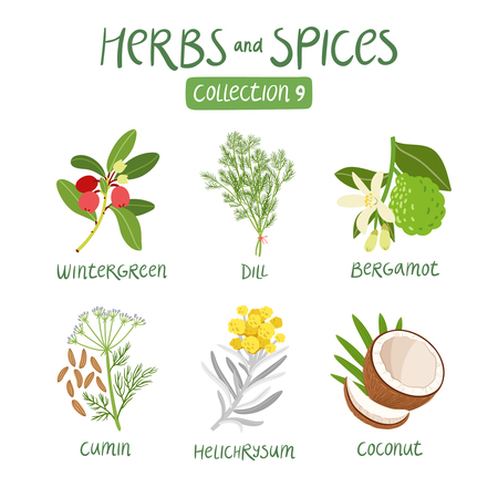 ayurveda: Herbs and spices collection 9. For essential oils, ayurvedic medicine
