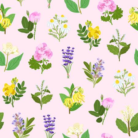 Essential flowers illustrations seamless pattern