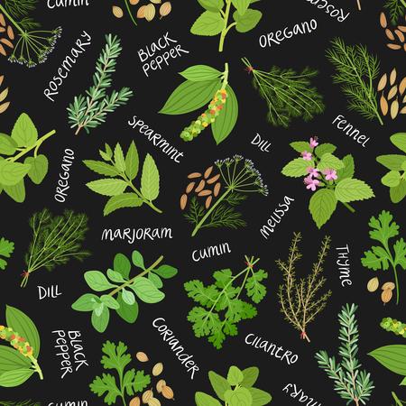 �pices: Herbes et �pices pattern sur fond noir Illustration