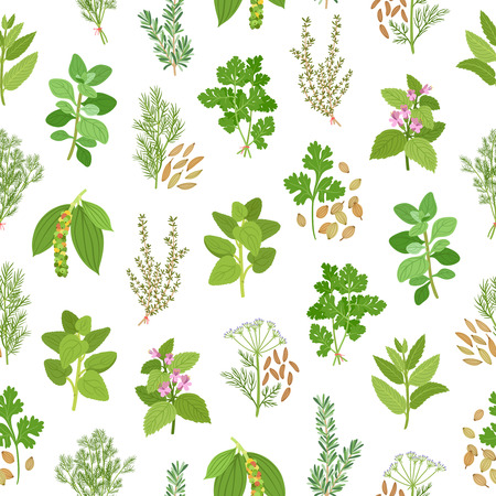 aromatherapy oil: Herbs and spices seamless pattern