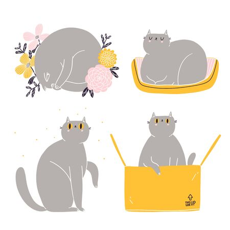 Cute british shorthair cat vector collection 矢量图像