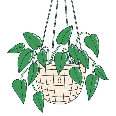 Scindapsus funny plant character in a hanging pot, isolated vector illustration Иллюстрация