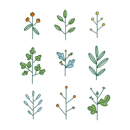 Set of nine simple hand drawn floral branches, isolated vector illustration Иллюстрация