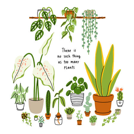 There is no such thing as too many plants, house plants isolated on white, floral vector illustration card