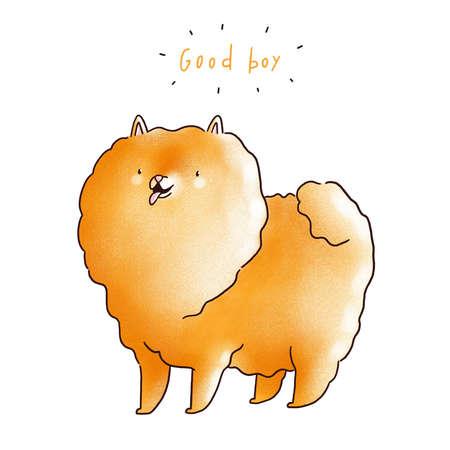 Good boy, cute and fluffy pomeranian spitz, cartoon illustration, isolated on white background