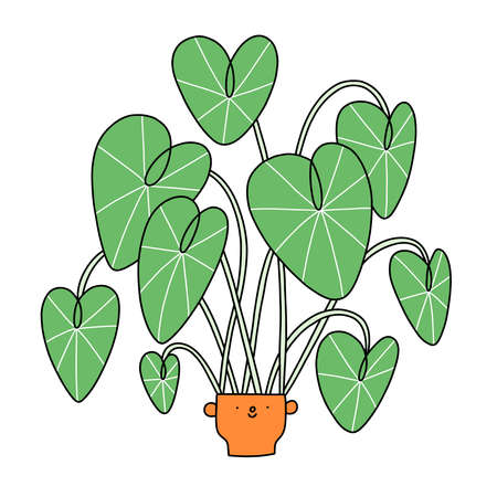 Cartoon alocasia character in a cute ceramic pot, vector illustration, isolated on white 向量圖像