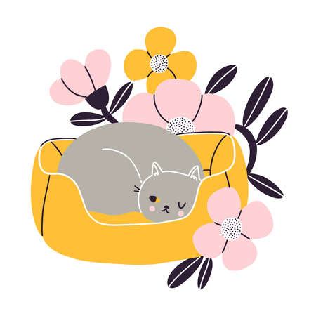 Cat nap corner, gray British cat sleeping in her pet bed with flowers, vector illustration isolated on white background 向量圖像