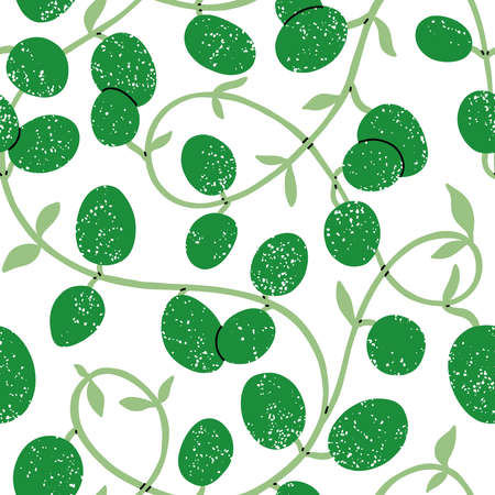 Wax plant liana, vector seamless pattern, green tropical leaves on white background
