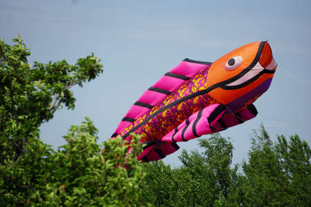 A kite in the form of a giant fish hovers in the sky above the trees.