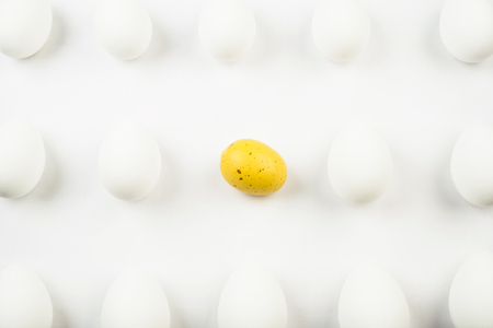nonconformity: One spotted yellow egg among rows of bleached white eggs.