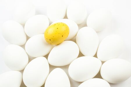 nonconformity: One spotted yellow egg among a group of bleached white eggs. Stock Photo