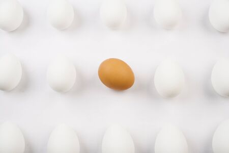 nonconformity: One organic brown egg among three rows of white eggs Stock Photo