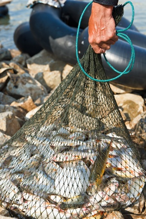 redes de pesca: pescador