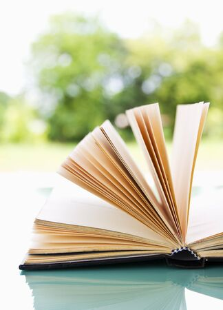 Open book over a light nature background Stockfoto