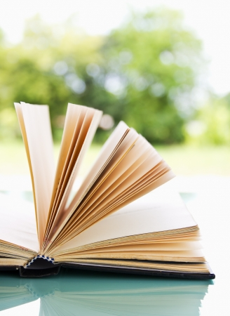 Open book over a light nature background Stock Photo