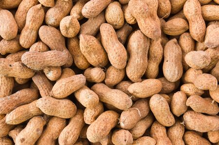 groundnut: Close up of some peanuts  or groundnut background