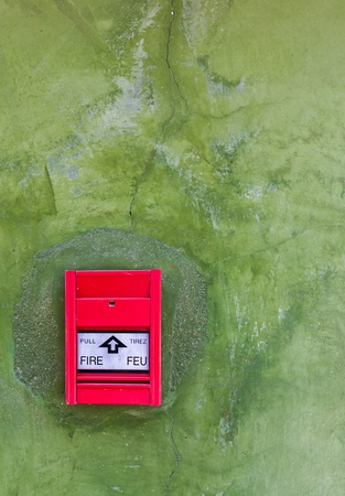 Red Fire alarm on green wall photo