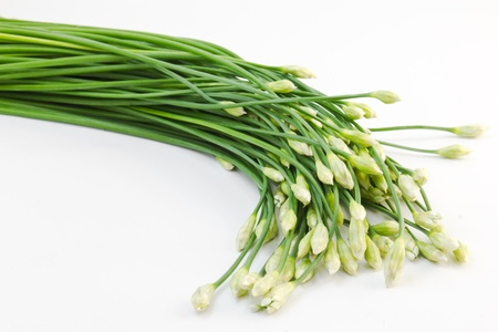 chives: Chives flower on white background Stock Photo