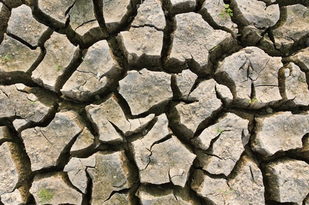 dryness: Cracked earth  metaphoric for climate change and global warming.