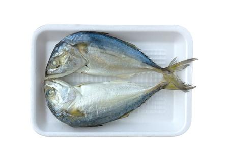 Two mackerel on white plate close up Stock Photo - 10910867