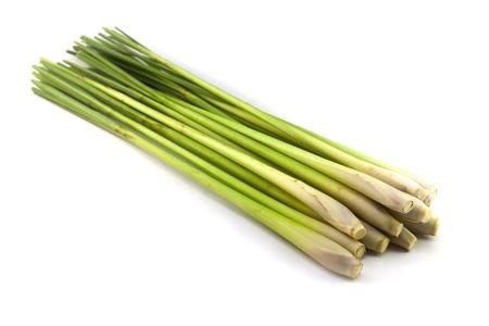 Fresh Lemon Grass op een witte achtergrond Stockfoto - 11223760